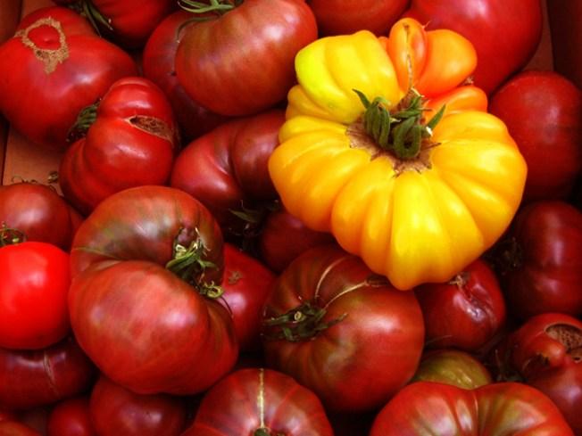 8/19: Barbounia's 3rd Annual Tomato Festival