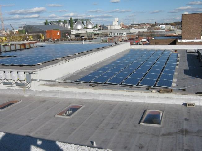 Renowned Brooklyn Studio Uses Solar Power to Generate Success
