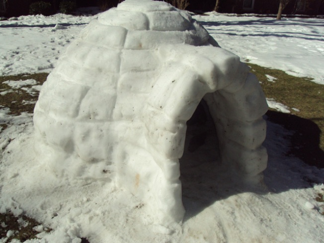 Queens Man Builds Backyard Igloo, Spends Night on Ice