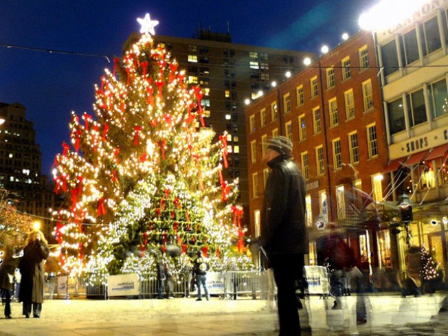 11/27: South Street Seaport Tree Lighting