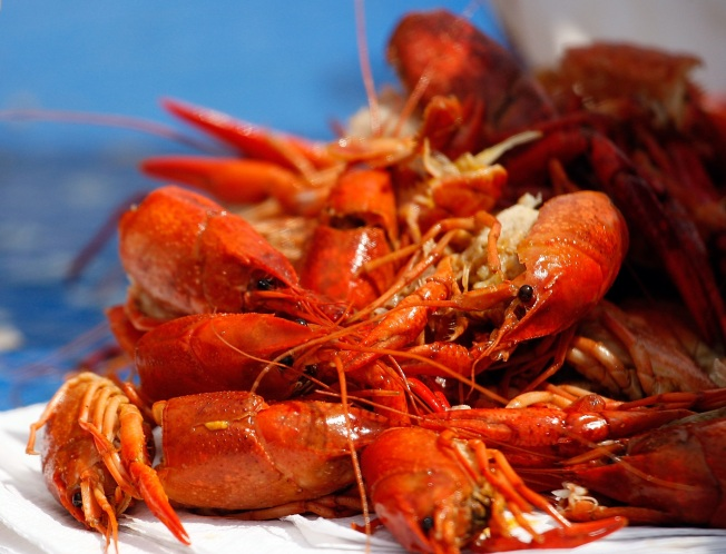The Crayfish Are Coming (Where To Get 'Em)
