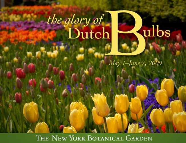 Dutch Glory: Behind the Scenes at the New York Botanical Garden