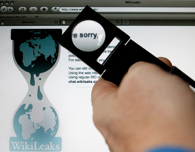The Who, What and Why of WikiLeaks