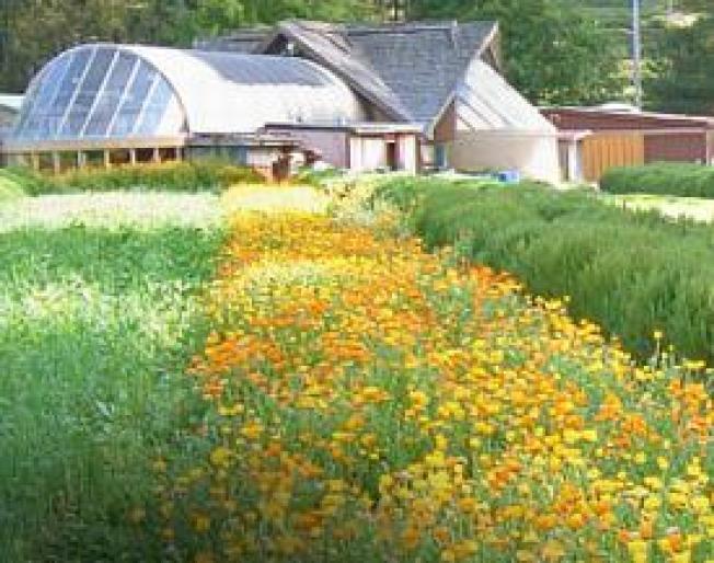Organic Farm Contaminated by Pesticides Wins $1M Verdict