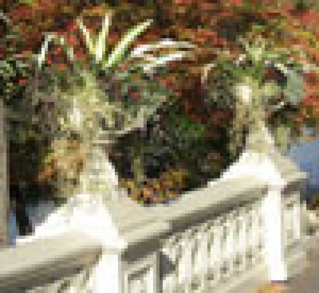 Central Park's 'Mutant Floral Gargoyles': Sure, the city is in such...