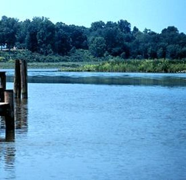 Two-year Milestones Set to Speed Chesapeake Bay Restoration