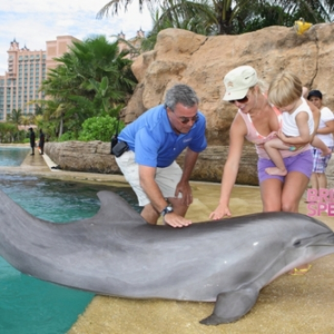 Britney's Bahamas Vacation: Water Slides, Dolphins & More!