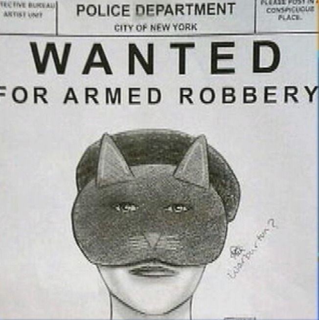 Cat Woman Thief Strikes Shoe, Beauty Stores
