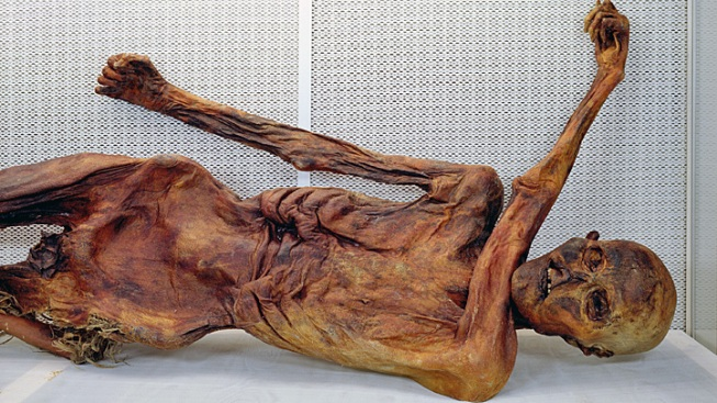 Scientists Find Oldest Blood on Record on Otzi the Iceman