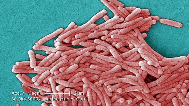 Legionella Found in Cooling Towers at 3 Long Island Schools; Officials