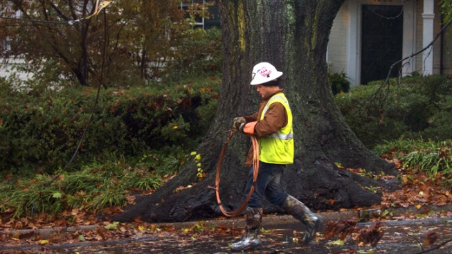 NYC Aims to Study Burying Power Lines After Sandy