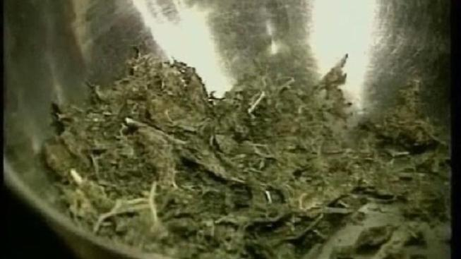 "Pot ""Vending Machine"" Seized in Raid"