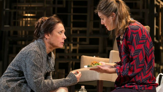 "Review: Laurie Metcalf, Torn Between Here and ""The Other Place"""