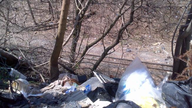 Bags of Bones Found Near Train Tracks in Queens