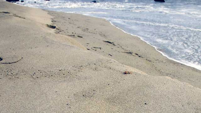 Swimming Restricted at NJ's Most Popular Beach After Needles Found
