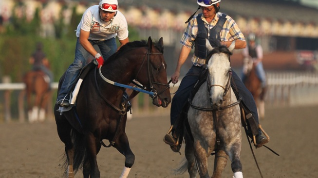 Bruce Beck Reveals His Pick to Win Belmont Stakes