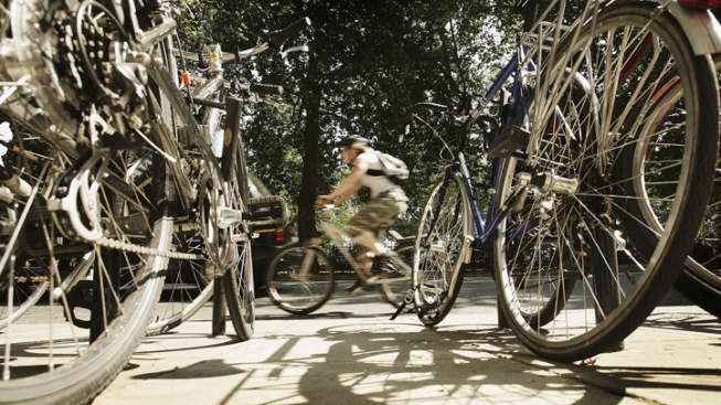 Bicyclists Need to Obey the Rules Too