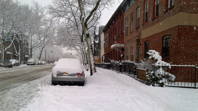 Backhoe Clearing Snow Strikes, Kills 73-Year-Old Man in Brooklyn