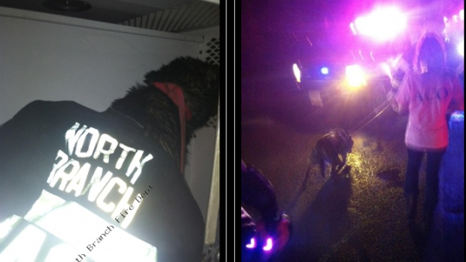 Dog Rescued from Ice in NJ River