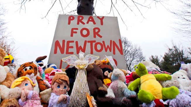 Newtown School Shooter Adam Lanza's Mental Health Issues Not Treated Appropriately: Agency