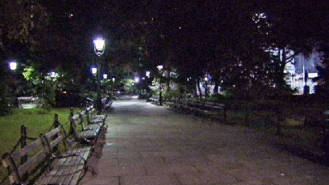Hammer-Wielding Man in Suit Attacks Spanish Tourist at City Hall Park