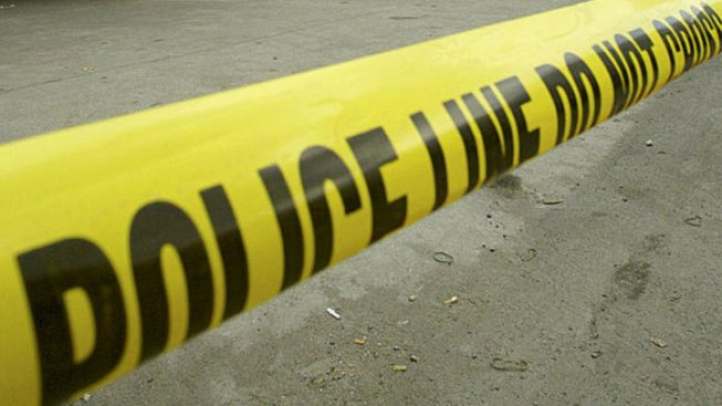 NY Retiree Shot Dead in Jamaica: Police