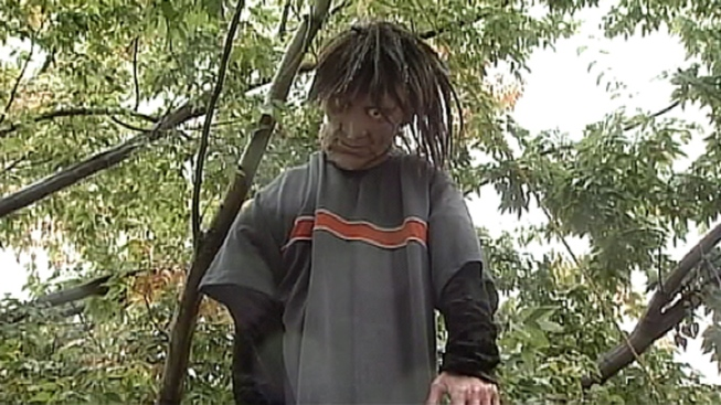 Scarecrow With Dreadlocks Removed from Tree After Complaints