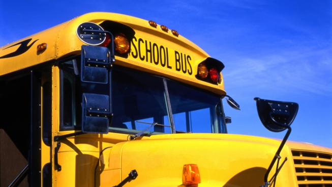 Boy Pushes Girl Out of Moving School Bus: DOE
