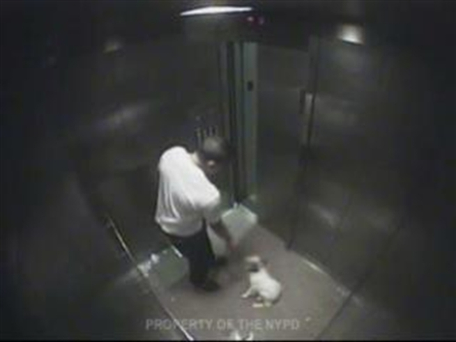 Police stumbled upon this video of a man abusing his dog, Chuvi-Duvi, a 12-pound Pomeranian-Chihuahua mix, while looking for the killer of 9-year-old Anthony Maldonado.