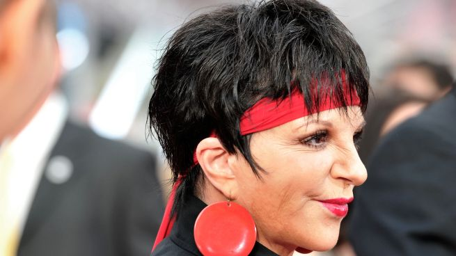 "Liza Minnelli to Appear on ""Smash"""