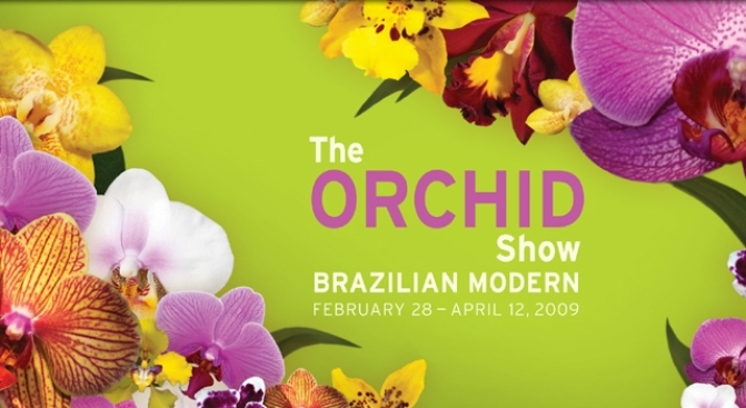 Orchid Show Coming to the Botanical Garden