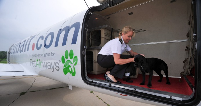 This Airline Is Going to the Dogs