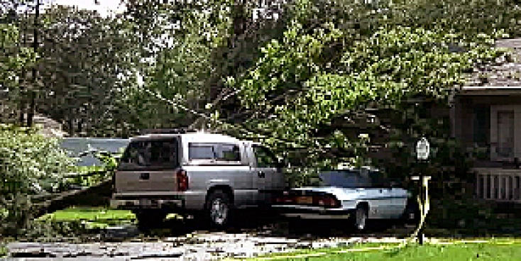 Plow trucks picked up tree limbs by the bundle, after a powerful storm tore through parts of Long Island on Friday, Jonathan Vigliotti Reports.