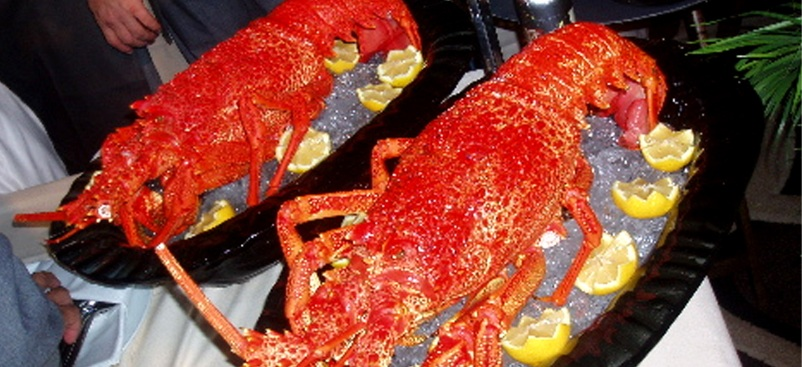 Lobsters, Partying & Spanish Royalty