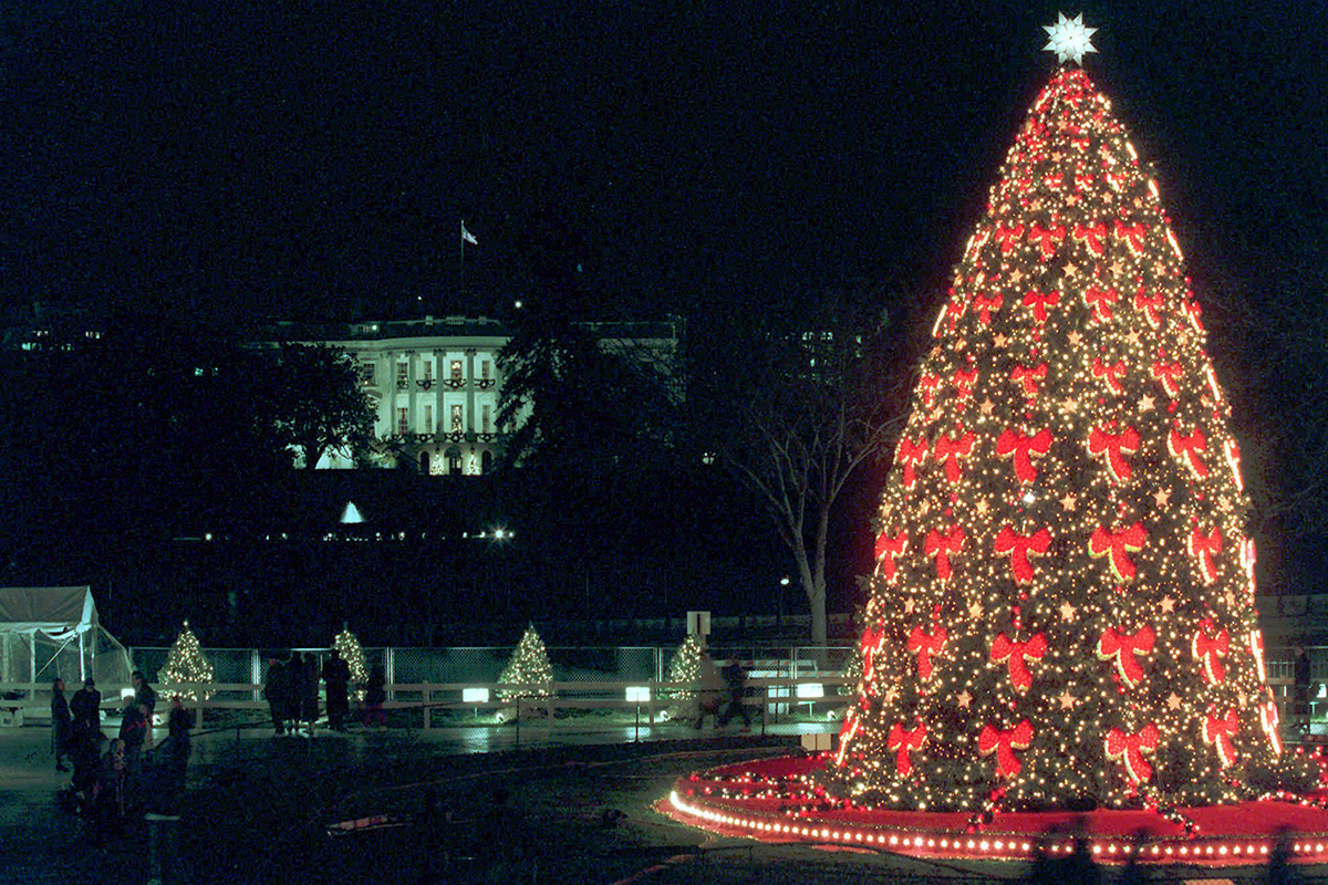 The National Christmas Tree stands during the 1995 Christmas Pageant of Peace Wednesday, Dec. 6, 1995 on the White House Ellipse.