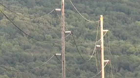 NY Utility Contractors Dead in Freak Electrocution Incident