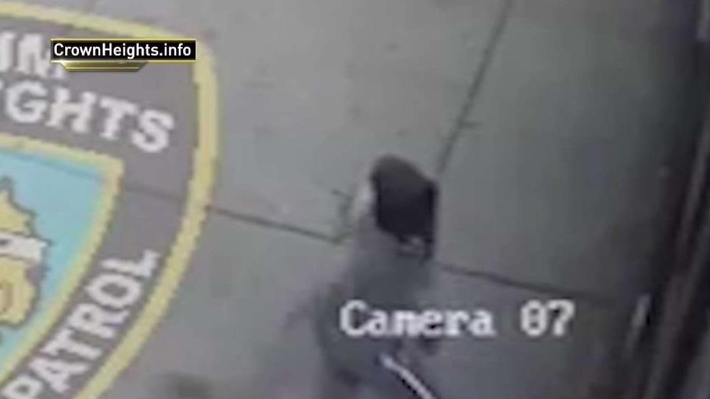 Man Arrested for Smashing Windows at Yeshiva School: NYPD