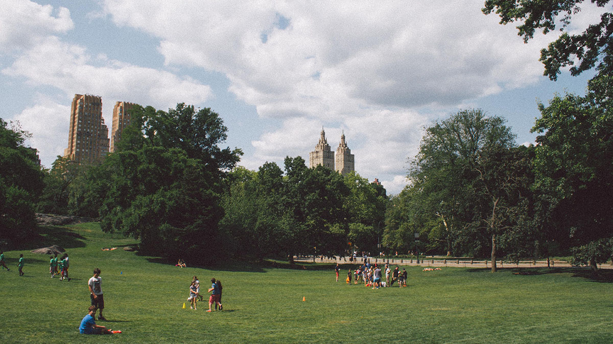 Among Major US Cities, NYC Last in Green Space Per Person